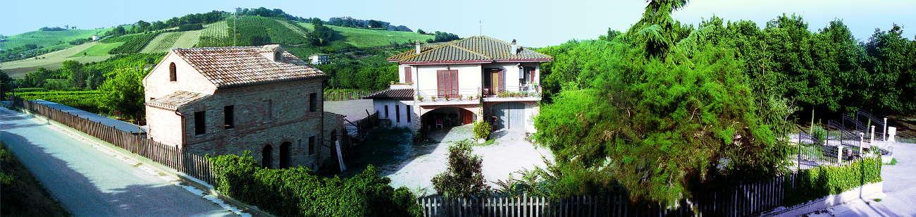 Azienda Agricola Catalini